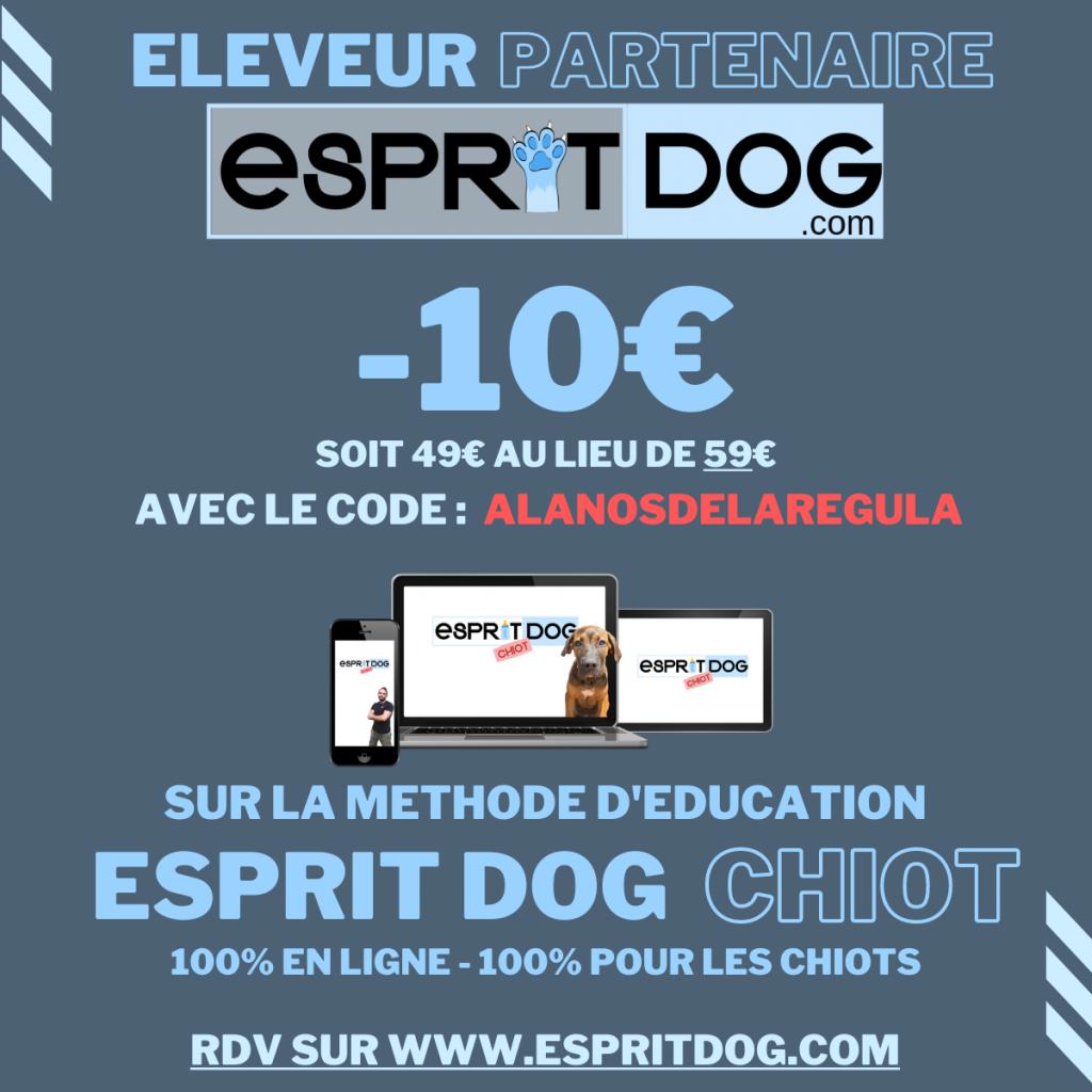 baniere-espritdog.com